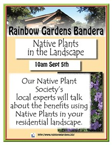 8b82719e_native_plants_in_the_landscape_bandera.jpg