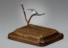a2d13b23_doug_hummingbird.jpg