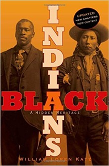 bd20bd78_black_indians_cover.jpg