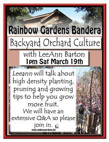 452ecfc9_backyard_orchard_culture_bandera.jpg