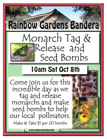 335d9764_monarch_tag_and_seed_bombs_bandera.jpg