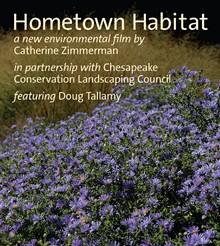 hometown-habitat.jpg