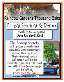 1cb15a37_bonsai_society_thousand_oaks_2017_2.jpg