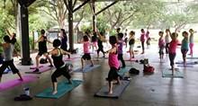 ff6ea0e5_yoga_with_a_view_photo.jpg