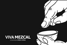 4af5711c_viva_mezcal_at_the_mexican_cultural_institute.jpg