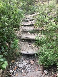 1a8847dd_steps-resize.jpg