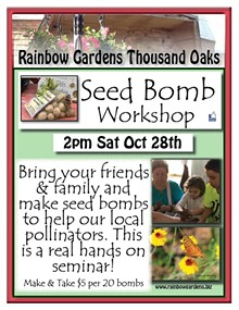 04c41097_seed_bomb_workshop_thousand_oaks.jpg