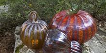 39d023e0_autumnal-pumpkins_01.jpg