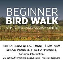 beginniner_bird_walk.jpg
