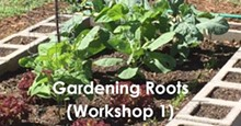 51e16aac_gardening-workshop-1.jpg
