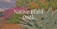 eaa97373_native_plant_walk.jpg