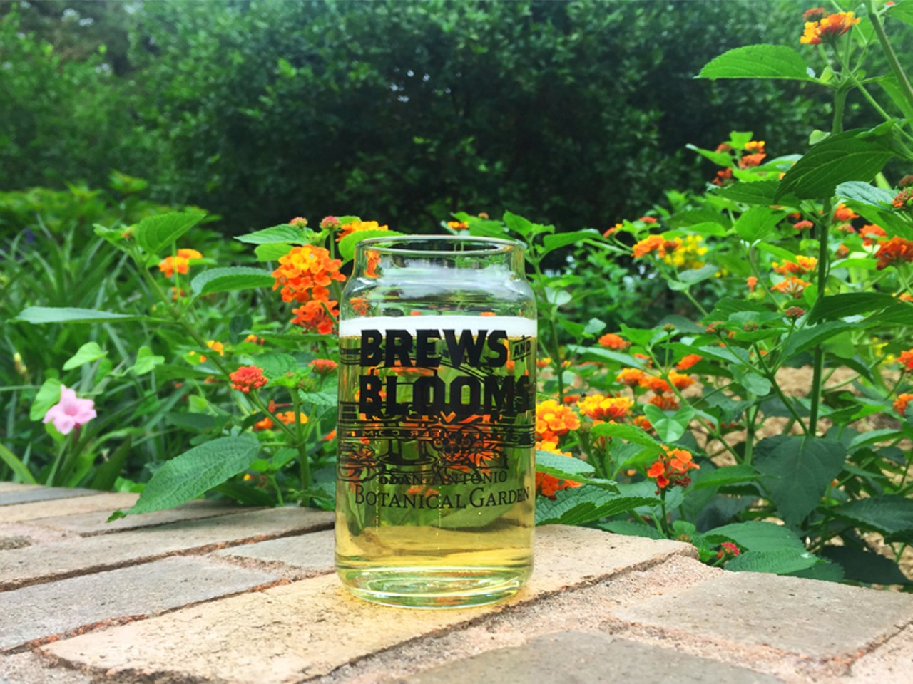 Brews And Blooms San Antonio Botanical Garden Special Events San Antonio Current