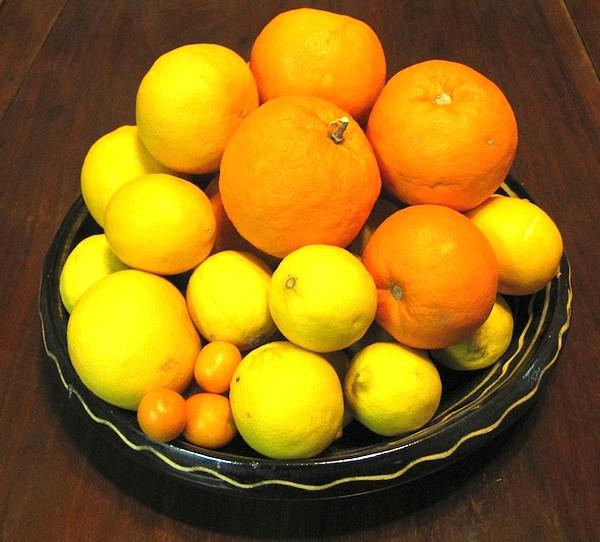 mo-citrusjpg