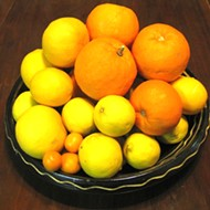 Urban Homesteader: more citrus