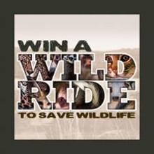 Win a Wild Ride to Save Wildlife