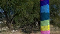 Yarn Dawgz — homegrown guerrilla knitting