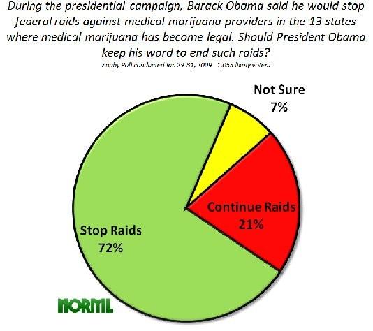 marijuana_zogby_poll_2009_raids.jpg
