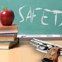 Arming the Teachers