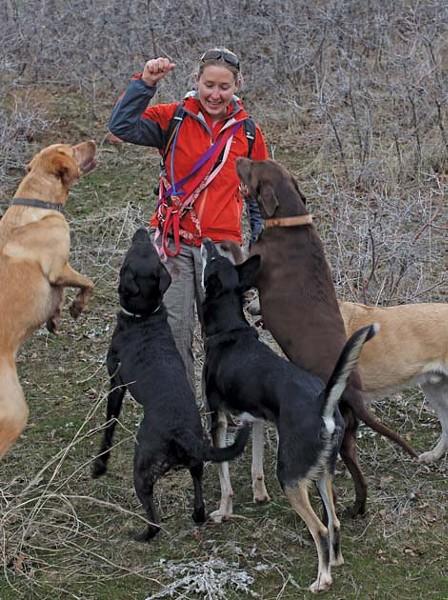 adventuredogs2_1.jpg