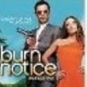 Burn Notice, The Cell 2, Killing Ariel, Peach Girl Pile Up, The Perfect Sleep