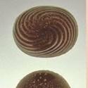 Caputo's Market & Deli's Chocolatier Blue Chocolates