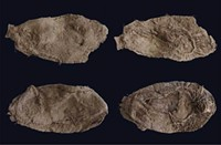 Children's moccasins found near Great Salt Lake shed light on ancient culture