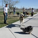 Exercise at the Dog Park