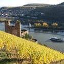 Experiencing Rheingau