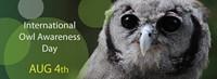 ae2504ad_international-owl-awareness-day.jpg