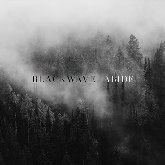 blackwave.jpg