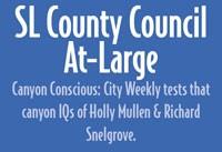 council_at_large.jpg