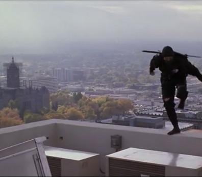 revenge_of_the_ninja_roof2.jpg