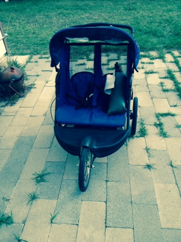 The modern-day handcart of homeless woman  Kim Krause, which she hopes to take on a trek south. - STEPHEN DARK