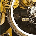 Tune Up Your Bicycle
