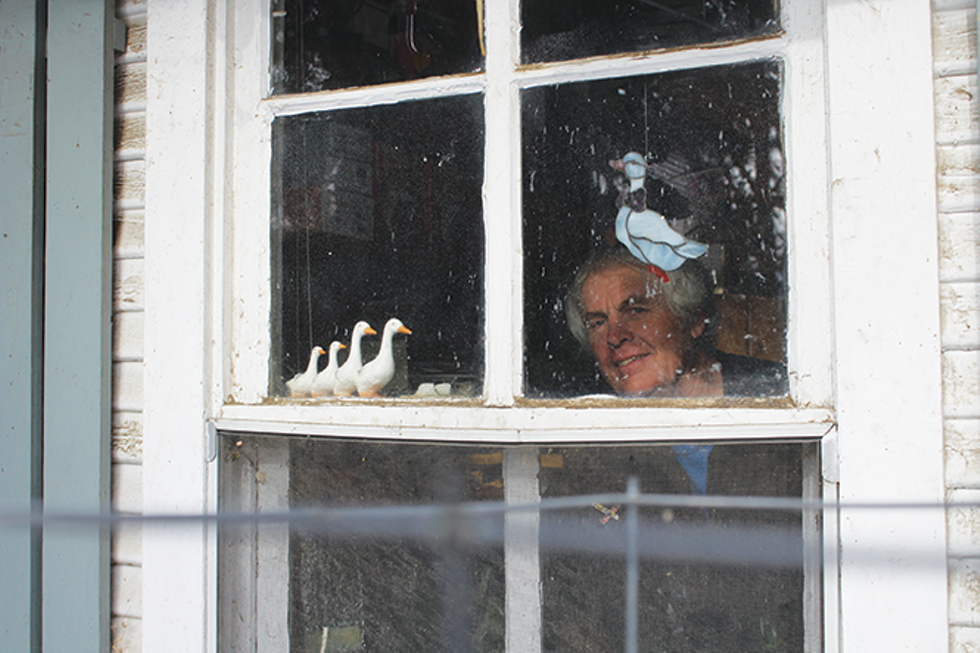 David Hampshire, longtime resident of fabled enclave Allen Park, aka Hobbitville, looks out from his former home. Remaining residents were unceremoniously evicted in January. - ENRIQUE LIMÓN