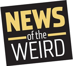 news_news-of-the-weird1-1-30c86e02cf6c0b4a.jpg