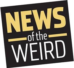 news_newsoftheweird1-1-b5d15f6923dd660b.jpg