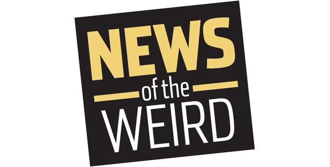 news_newsoftheweird1-1-34257174954e5362.jpg