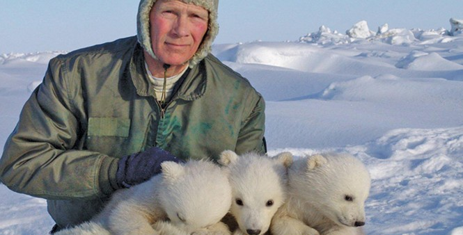 Steven Amstrup, co-author of 21 - papers in the 92-paper database, with three ridiculously cute polar bear cubs. - COURTESY POLAR BEARS INTERNATIONAL