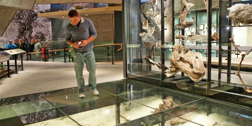 Natural History Museum of Utah - STUART RUCKMAN