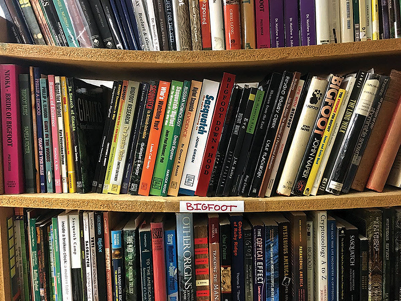 A collection of Bigfoot books threaten to collapse the shelves at Bigfoot Books in Willow Creek, Calif. - LAURA KRANTZ