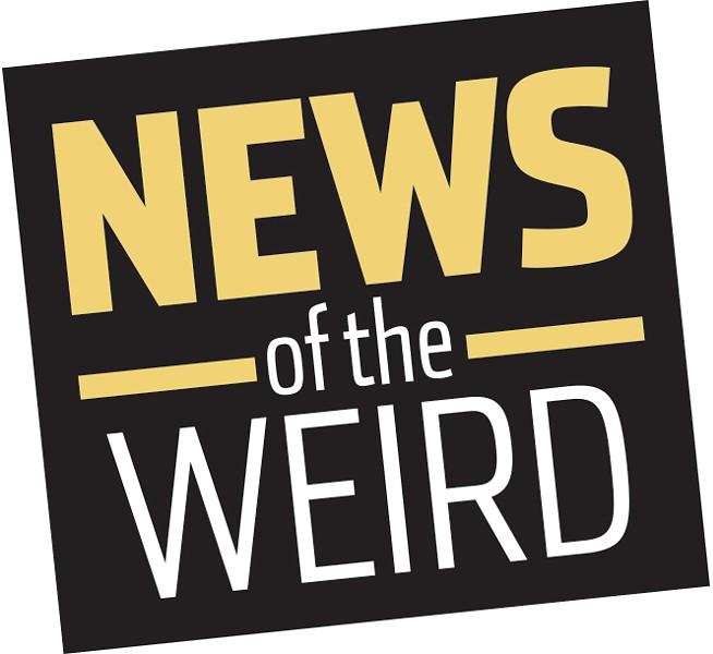 news_newsoftheweird1-1-551550c215889369.jpg