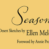 Last Words From a Desert Scribe