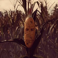 The Pipeline: Getting Lost In The Maize