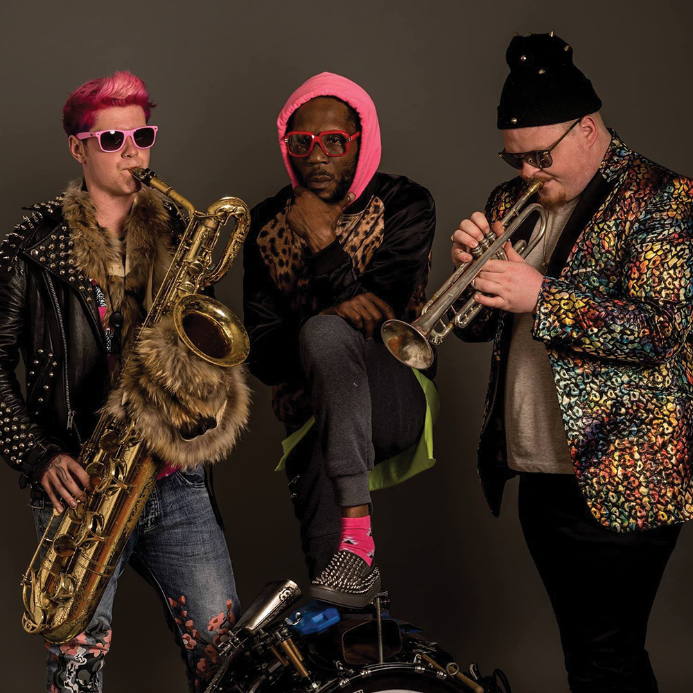 Too Many Zooz - PAQUIN
