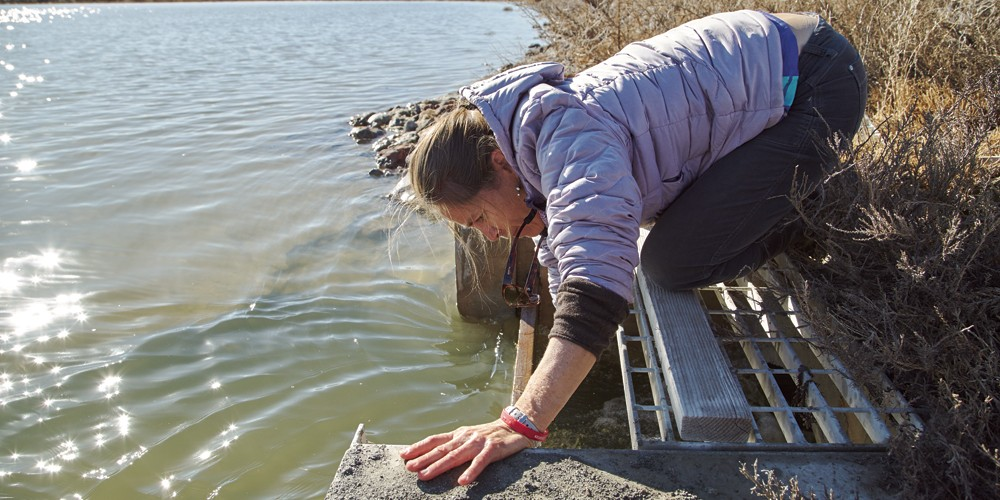 Heidi Hoven lifts up a board to let water flow from one area of the Gilmore Sanctuary to another. - SARAH ARNOFF