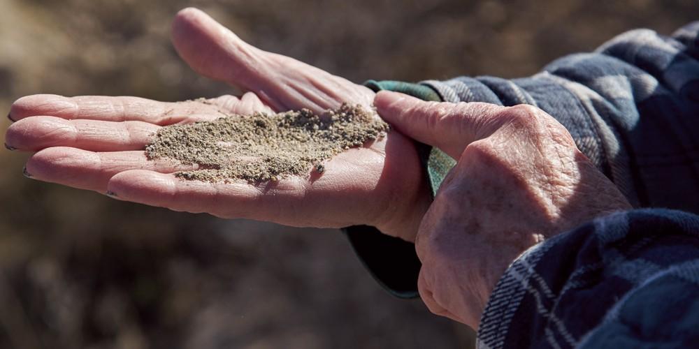 Ella Sorensen describes the unique sand found at the edge of the Great Salt Lake on a tour through the sanctuary. - SARAH ARNOFF