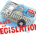 What's in Our Legislation?