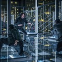 Movie Reviews: John Wick Chapter 3, The Sun Is Also a Star, A Dog's Journey