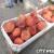 9.14.13 Farmer's Market